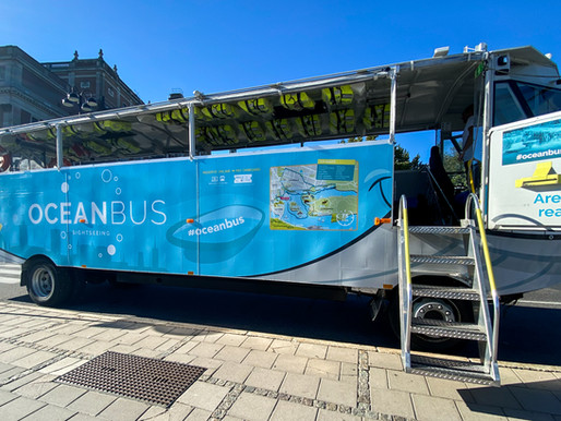 About Oceanbus
