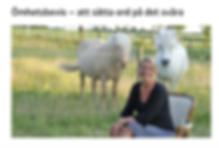 Artikel om Marie Ek Lipanovska på Svenska kyrkans hemsida