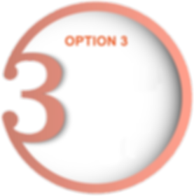 Option3.png
