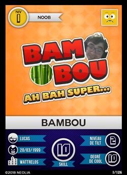 NIVEAU 1 - BAMBOU