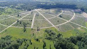 Строительство нового кладбища в Воронино завершат в 2021 году