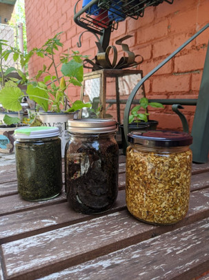 Nettle, Mullein and Marshmallow tinctures