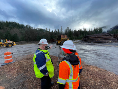 Oregon wildfire recovery debris removal begins with hazard trees
