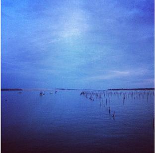 Ma poésie / Bassin d'Arcachon.