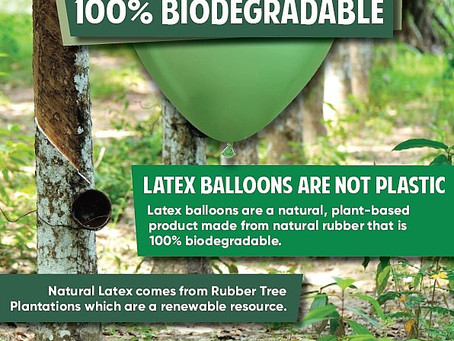Being environmentally responsible use balloons for celebrations! Latex balloons are biodegradable!