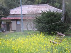 The Faraway House