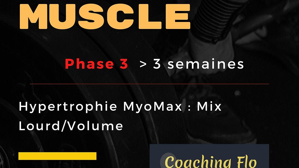 Phase 3 Programme Prise de Muscle