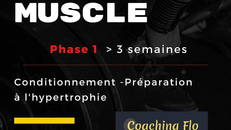 Phase 1 Programme Prise de Muscle
