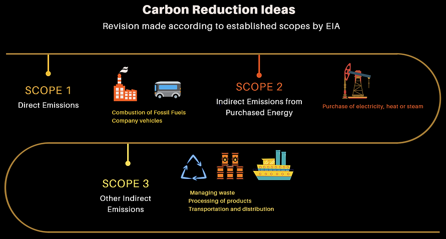Carbon Reduction Ideas.PNG