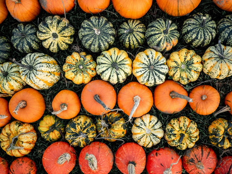 Why Pumpkin Is A Healthy Treat