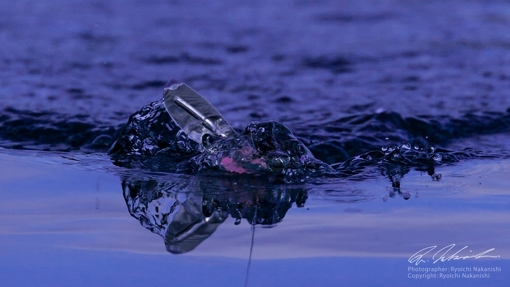 水馴染みを重視したザックロールYAJIROBEEのノーマルリトリーブアクション