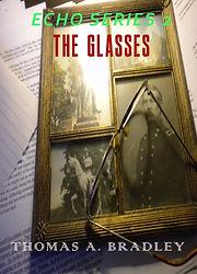 Glasses cover 001.jpeg