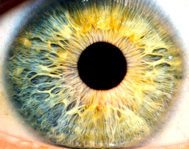 Aphantasia: when your mind's eye draws a blank