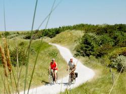 fietsen-duinen.jpg