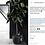 Thumbnail: Rubber Plant - Ficus Elastica
