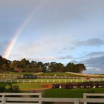 red hill equestrian rainbow.jpg
