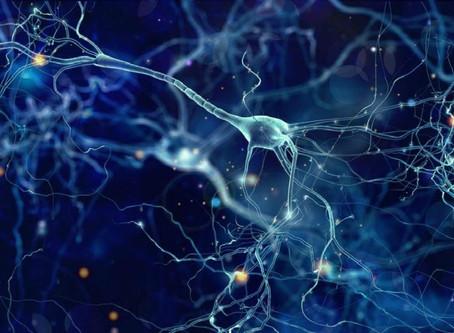 ¡Todo el universo podría ser una red neuronal!