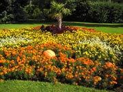 Blumendoerfer.jpg