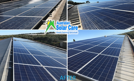 Bird Proofing and Solar Panel Cleaning Adelaide