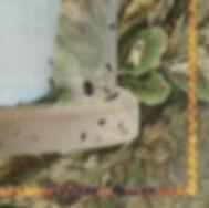 Quien-siembra-recoge-Corte-Parte-3-500KB