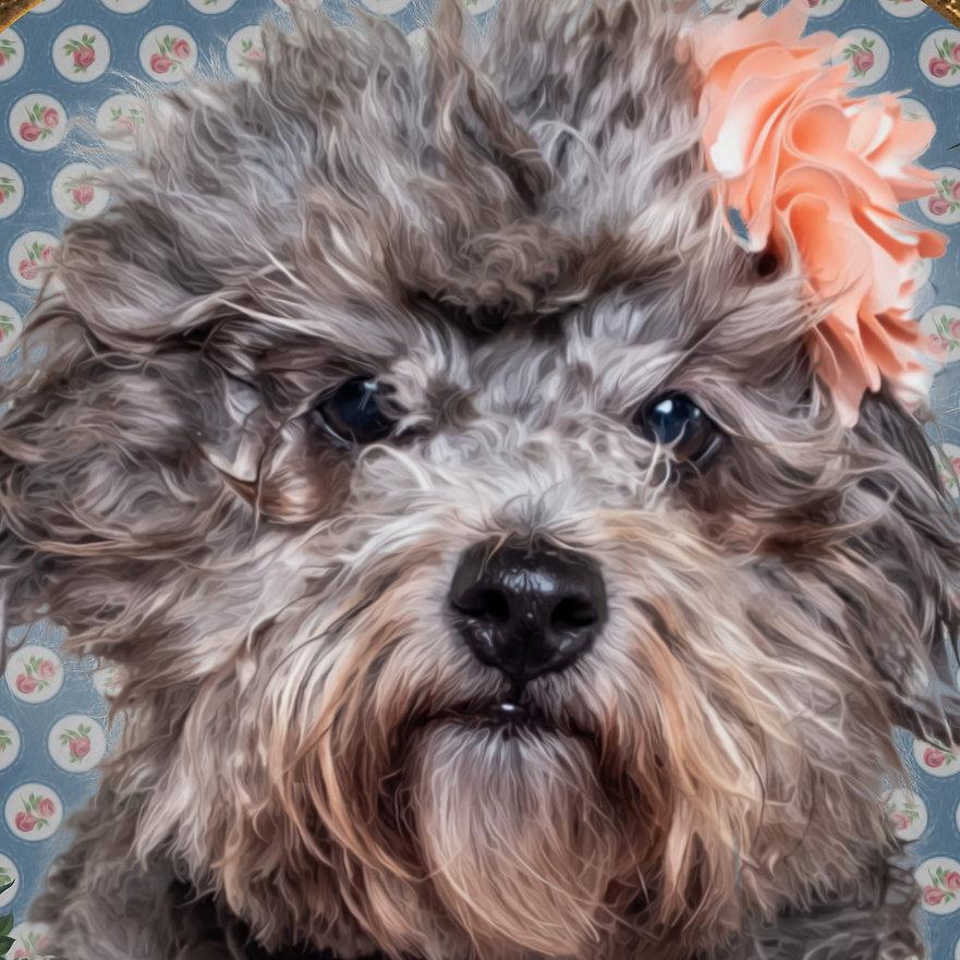 Retrato-Frida-4-años-Corte-1-500kb.jpg