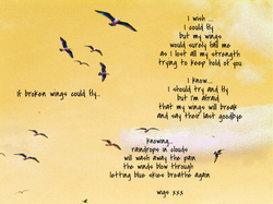 If broken wings could fly