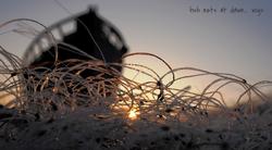 Fish nets at dawn...