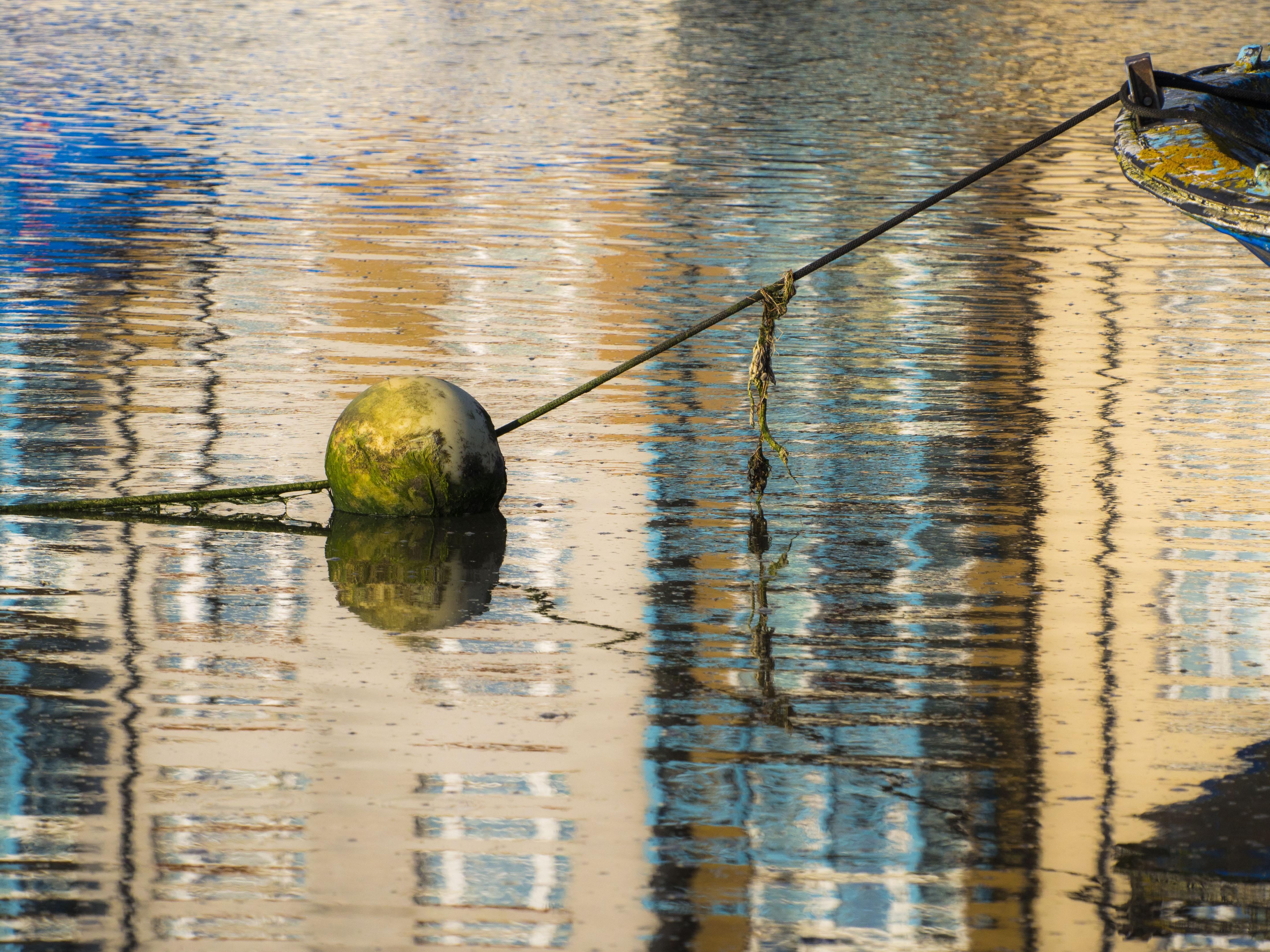 reflection-6