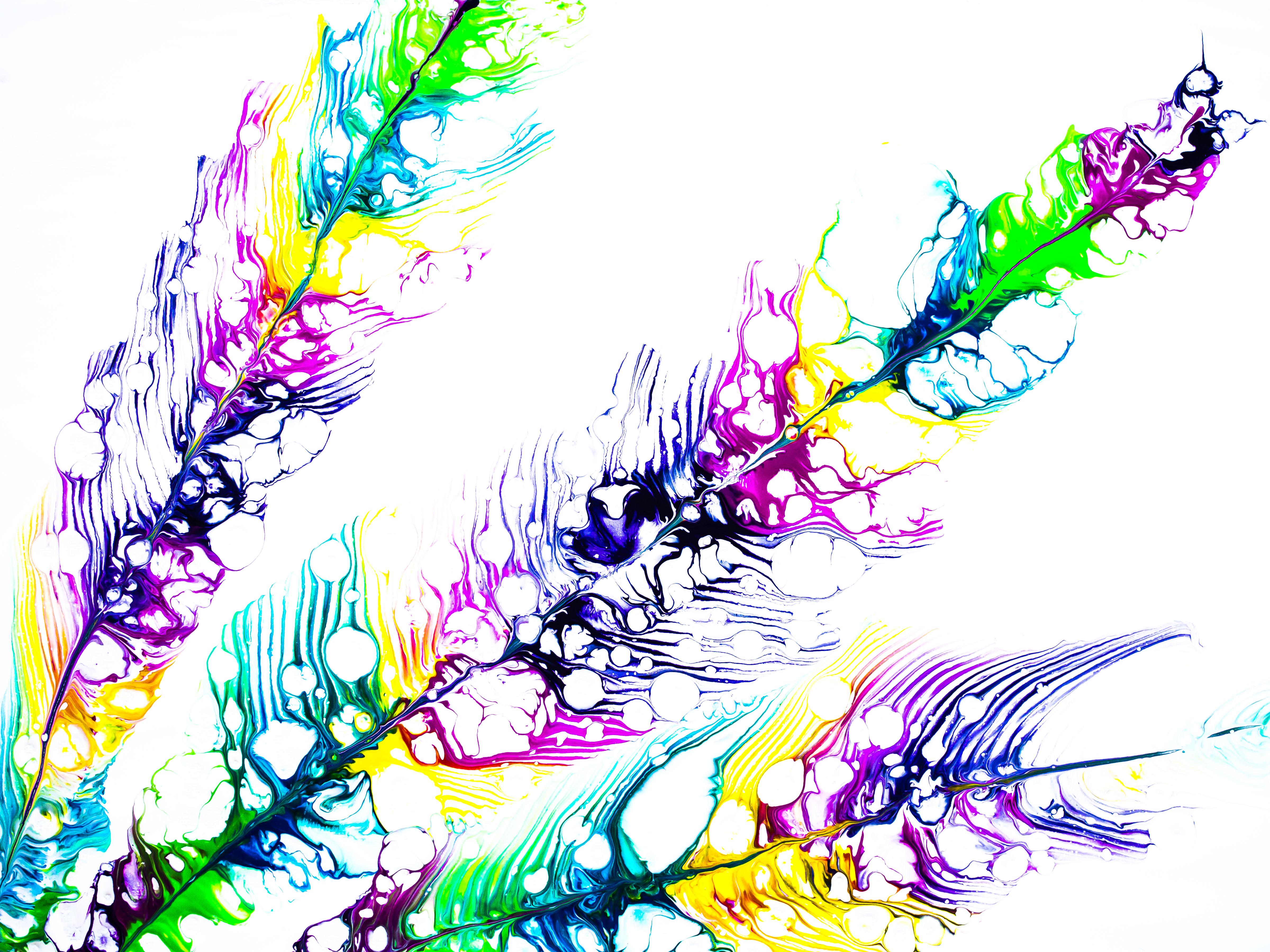Rainbow feathers...