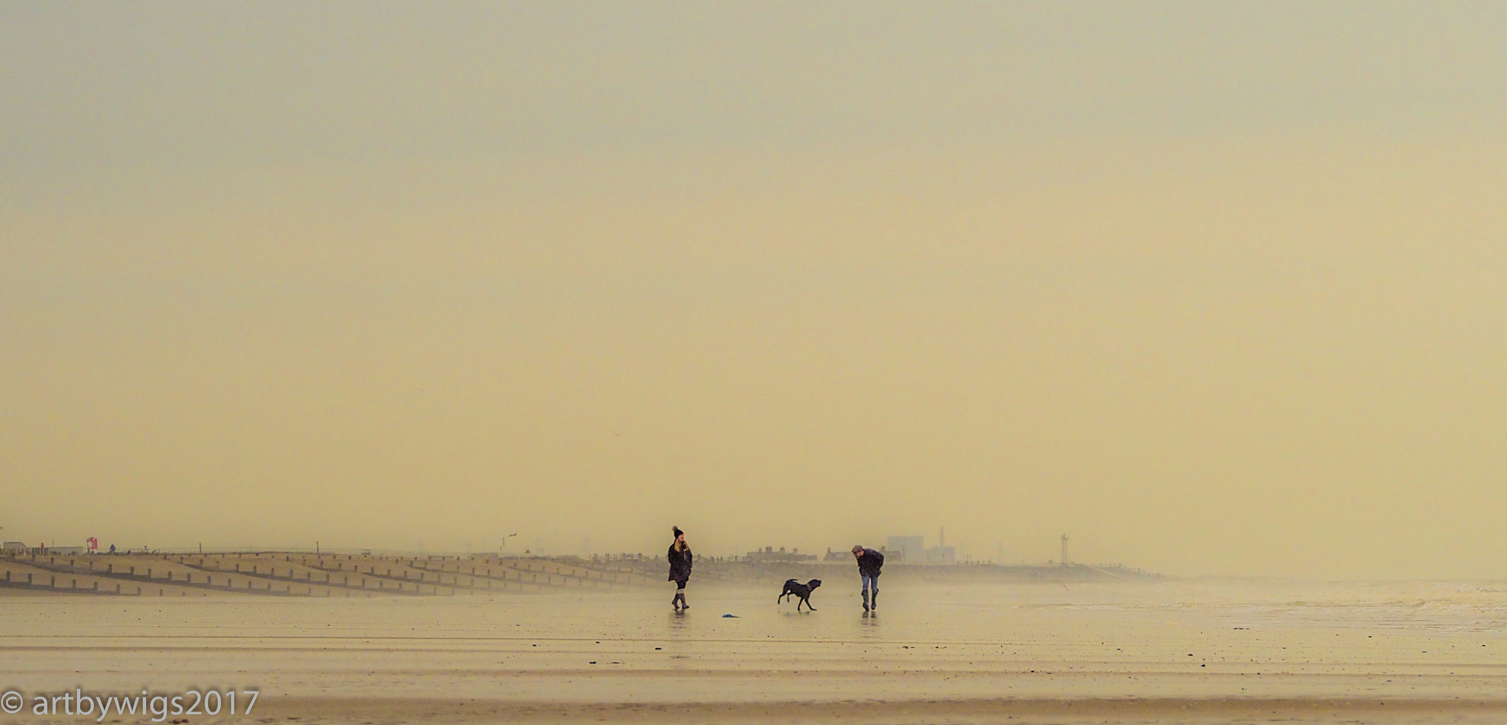 Suday Morning Stroll at Camber-3030287