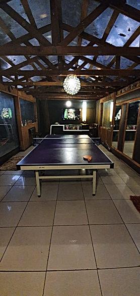 table tennis.jpeg
