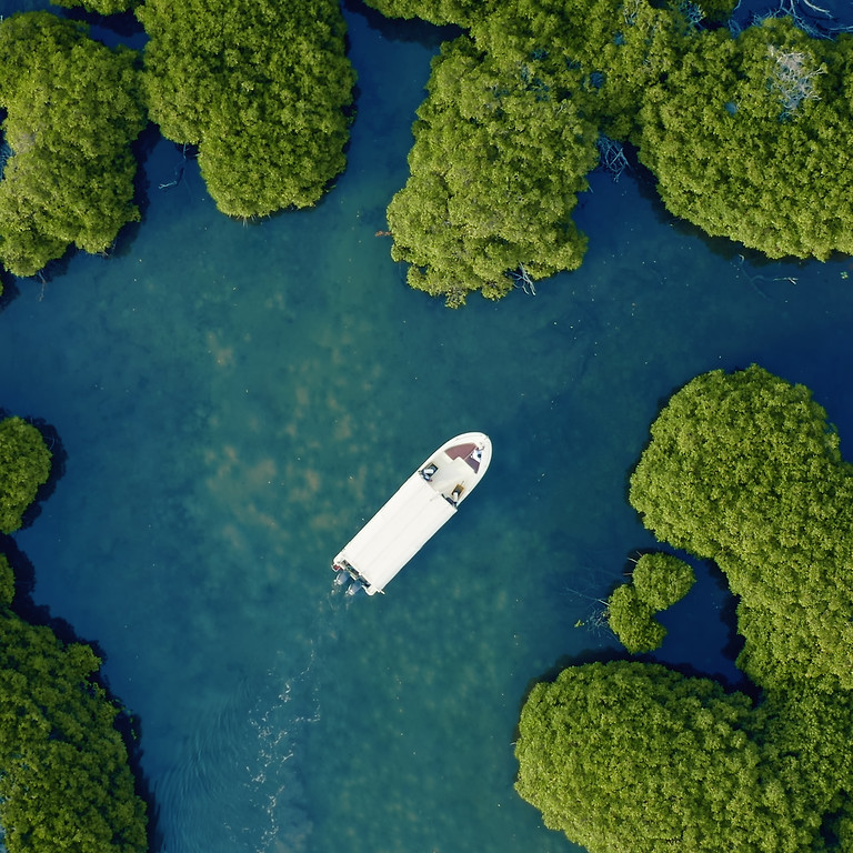 3 Days Farasan Islands Reserve