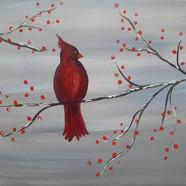 Winter Cardinal (2019_06_05 00_28_50 UTC