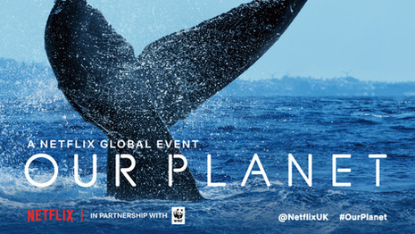 OurPlanet_UKPremiere_WalkOutSlide_1-77.j