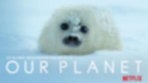 OurPlanet_Danish_WalkinSlide_1-78_1-77_A