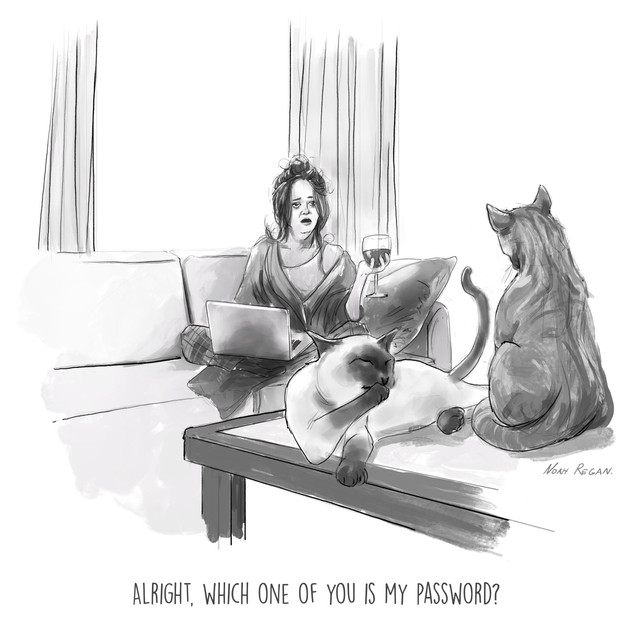 Password Cat