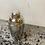 Thumbnail: 8oz Stainless Steel Cocktail Shaker