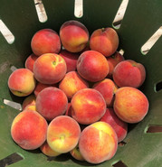 Locally Sourced Peaches
