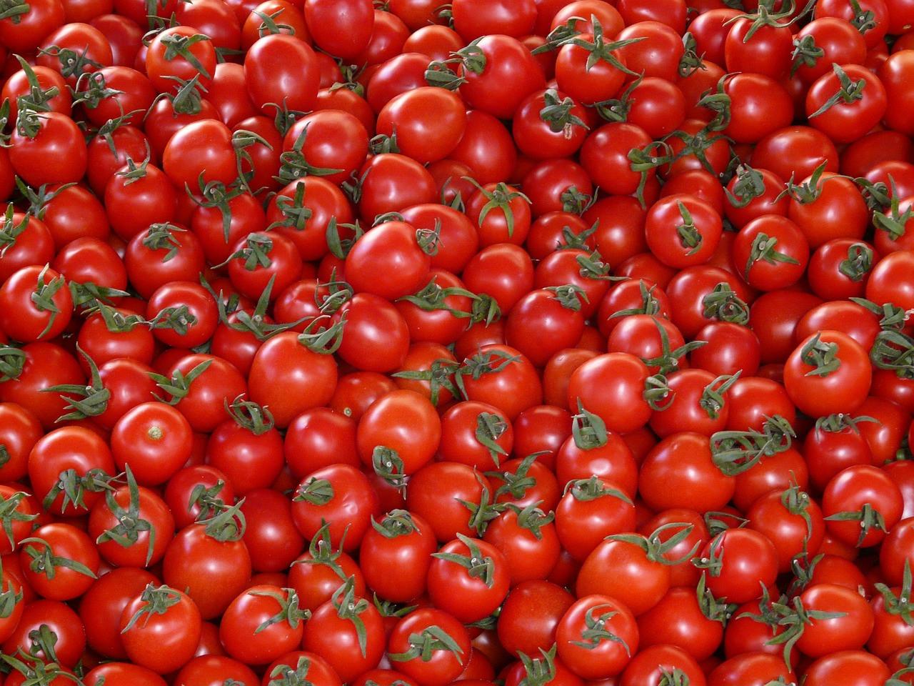 tomatoes-73912_1280.jpg