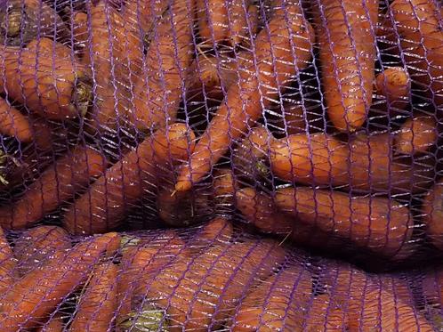 Морковь продовольственная Кардобе