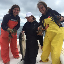 Cape Cod, Lobsters, Striped Bass