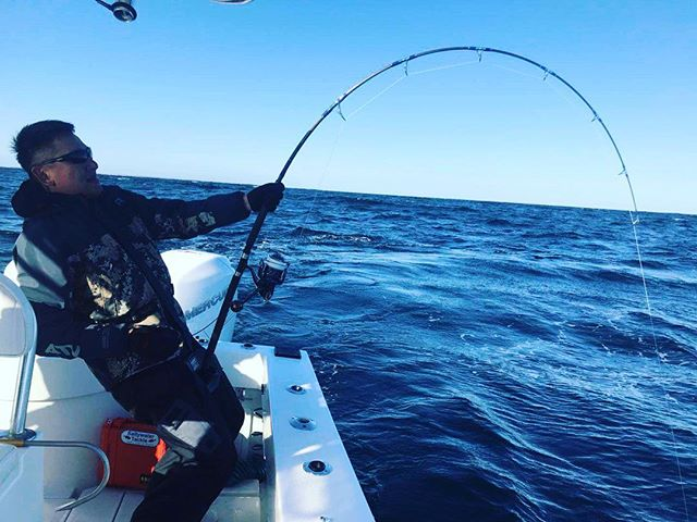 """Doubled over on a 72"""" bluefin"""