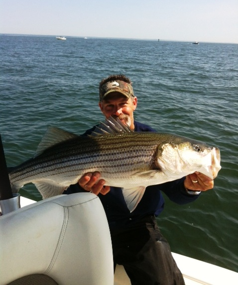 Cape Cod, Fishing, Striped Bass