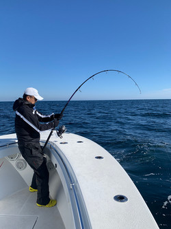 Top water, bluefin tuna Fishing, Cape Cod