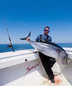 Bluefin Tuna, Topwater spinning gear