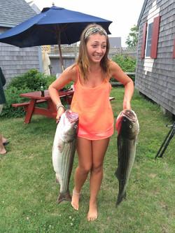 Double, Striped Bass, Cape Cod