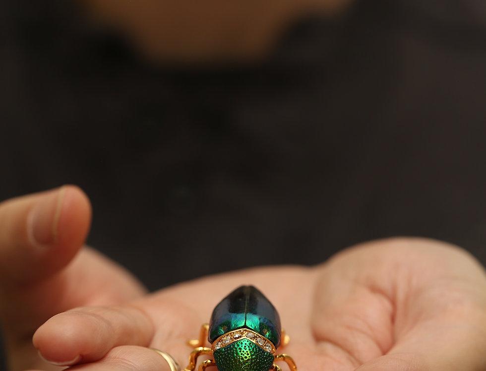 Real Jewel Beetle Brooch