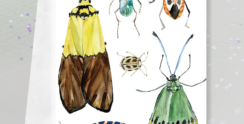 Moth, beetle and bug Greeting Card