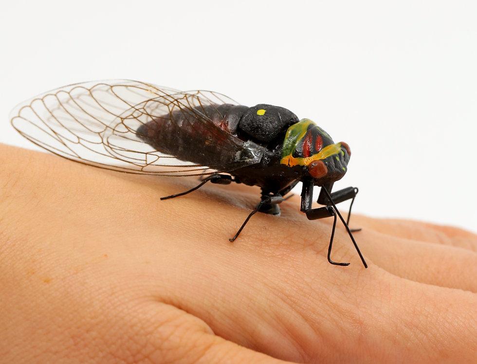 Cicada Life-size Magnet