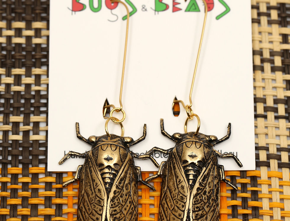 Cicada earrings - Brass & stainless steel